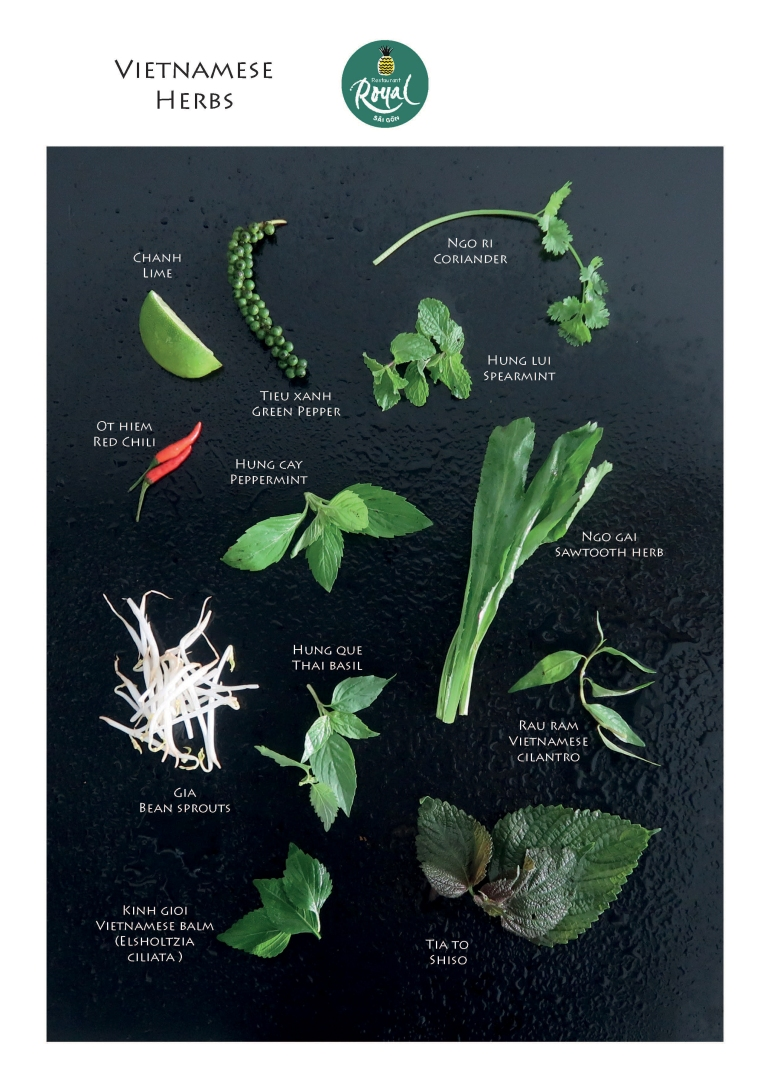 Herb_Page_02